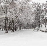 Hiver en parc Kremenkug Photographie stock libre de droits