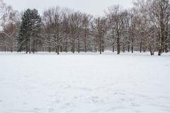 Hiver et neige à Berlin photographie stock libre de droits