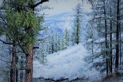 Hiver et neige dans la montagne froide du sibiria d'altai photo libre de droits