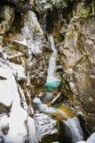 Hiver et paysage de neige au bâti Rainier National Park, paradis Photos stock
