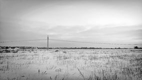 Hiver field Image stock