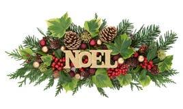 Hiver Flora et Noel Decoration Image libre de droits
