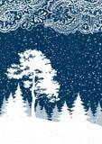 Hiver Forest Landscape de Noël Photos libres de droits