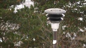 Hiver Forest Park snowly banque de vidéos