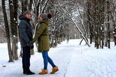 Hiver hétérosexuel de promenade de rue de couples photographie stock