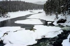 Hiver Madison River Yellowstone Image libre de droits