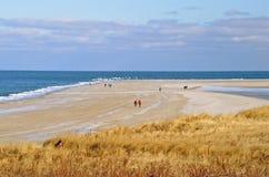 Hiver marchant sur la plage Photo libre de droits