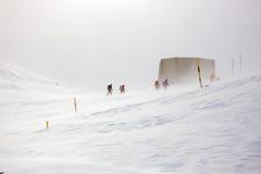 Hiver, montagnes couvertes de neige avec des randonneurs image libre de droits