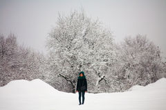 Hiver, neige et fille Photos stock