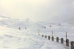 Hiver, paysage neigeux de montagne avec des randonneurs image libre de droits
