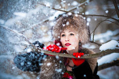 Hiver russe Image stock