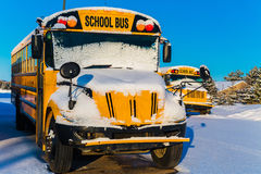 Hiver Schoolbuses Photographie stock