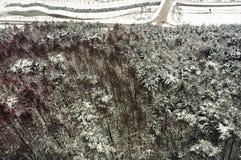 Hiver Ski Jump Center olympique de Pyeong Chang 2018 photos libres de droits
