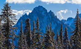 Hiver sur la chaîne de montagne de Tatoosh Images libres de droits