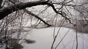 Hiver sur la rivière Image libre de droits