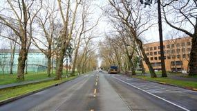 Hiver sur le chemin commémoratif Photos libres de droits