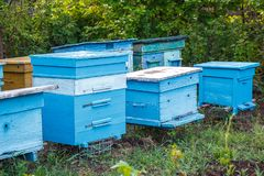 Bee apiary standing in a green garden royalty free stock photos