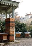 Hives in the city Royalty Free Stock Images