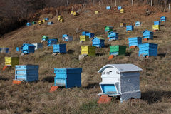 Hives at meadow in mountain area Royalty Free Stock Images