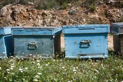 Hives and other beekeeping appliance for breeding bees. And obtaining honey, harvest honey. Beekeeping in Asia Minor, Turkey Royalty Free Stock Images