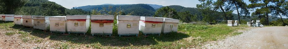 Hives and other beekeeping appliance for breeding bees. And obtaining honey, harvest honey. Beekeeping in Asia Minor, Turkey, apiary; beegarden Stock Image