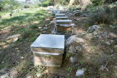 Hives and other beekeeping appliance for breeding bees. And obtaining honey, harvest honey. Beekeeping in Asia Minor, Turkey Stock Image