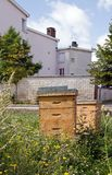 Hives in town Royalty Free Stock Photo