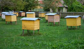 Hives. Yellow hives standing in the yard Royalty Free Stock Photography