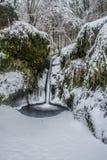 Hjälm i vinterför fotografering för bildbyråer