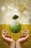 Hjälp jorden, genom att plantera trädet Royaltyfri Bild