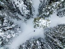 Hjälp! Sos! Flyg- surrfoto av en borttappad fotvandrare i Colorado Rocky Mountains royaltyfri bild