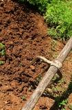 hjälpmedel för 4 trädgårds- gräsplaner Arkivbild