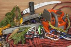 Hjälpmedel för att klippa träd, nytto- arborists Chainsaw, rep och carabiners som arbetar skogsarbetaren arkivbilder