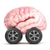 hjärna 3d på hjul Arkivbild