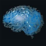 Hjärna och dator Arkivbild