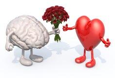 Hjärnan räcker henne en bukett av rosor till en hjärta Arkivbild