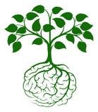 Hjärnan rotar trädet royaltyfri illustrationer
