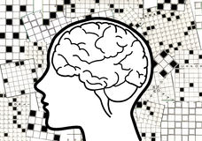hjärncollagekorsord Royaltyfria Foton