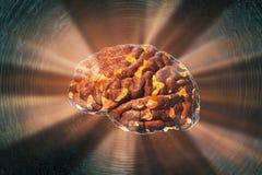 Hjärnförstörelse, medicinskt begrepp för hjärnsjukdom, sammanbrott, fördjupning, huvudvärk eller migrän arkivfoto