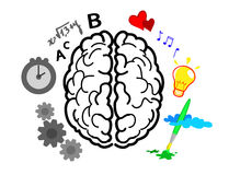 hjärnhalvklot royaltyfri illustrationer