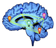 hjärnidélightbulbs Royaltyfri Bild
