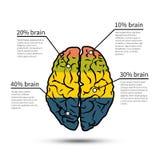 Hjärninfographicsdesign mall för restaurang för begreppsdesign stock illustrationer