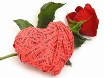 hjärta älskar jag rose dig Arkivbild