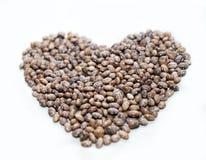 Hjärta av bönor Royaltyfria Bilder