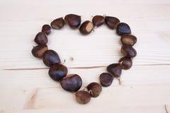 Hjärta av bruna kastanjer i höst Royaltyfria Bilder