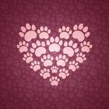 Hjärta av Cat Traces. Arkivfoton