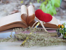 Hjärta av den gamla boken, röd hjärta för bokmärke, torkade blommor, begreppsförälskelse och par Royaltyfria Bilder