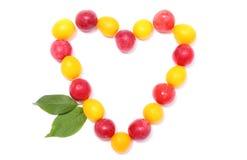 Hjärta av den röda och gula mirabellen på vit bakgrund Royaltyfri Fotografi