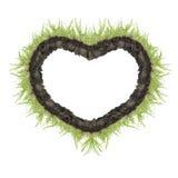 Hjärta av grönt gräs Arkivfoton
