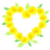 Hjärta av gula maskrosor Royaltyfria Foton